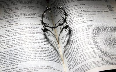 Bijbelboek
